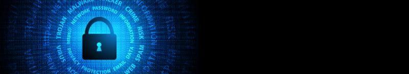 Cyber-banner-03_800x145