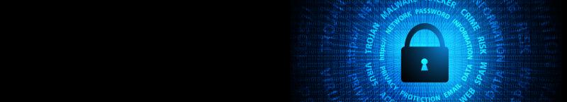 Cyber-banner-04_800x145